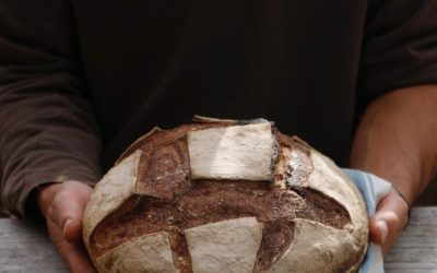 Knitting and baking retreat – con Giulia Wooldone